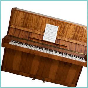 Piano Keyboard Organ